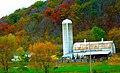 Oak Leaf Stock Farm - panoramio.jpg