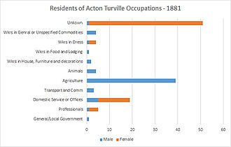 Acton Turville - Occupation Statistics of Residents in Acton Turville dated in 1881. This shows both the occupations of male and female residents in a number of professions.