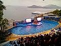 Ocean Park, Hong Kong - panoramio (22).jpg