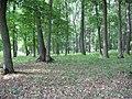 Okhtyrs'kyi district, Sums'ka oblast, Ukraine - panoramio (16).jpg