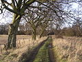 Old Track to Cardowan House - geograph.org.uk - 123472.jpg