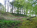 Old quarry, Long Knowe - geograph.org.uk - 10589.jpg