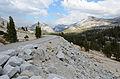 Olmsted Point Yosemite August 2013 001.jpg