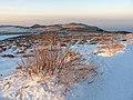 On the way back from Cherni vryh, Vitosha mountain - winter 2013.jpg
