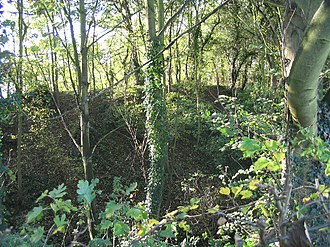 Chipping Ongar - The motte of Ongar Castle