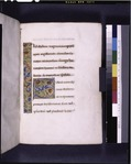 Opening of introduction, border design, large initial, rubric (NYPL b12455533-426084).tif