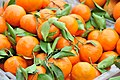 Orange in Yichang, Hubei 湖北宜昌蜜桔.jpg