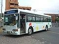 Osumi-kotsu-network bus 2.jpg