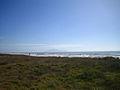 Otaki.Beach.jpg
