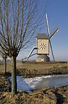 overzicht windmolen, standerdkorenmolen - wanroij - 20348885 - rce