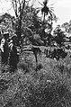 Palembang. Y-Brigade generaal Kruls bij een demarcatielijn Er is prikkeldraa, Bestanddeelnr 4996.jpg