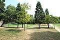 Parc Heller à Antony le 12 août 2015 - 057.jpg