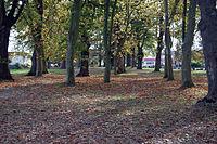 Parque en Idron.jpg