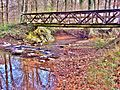Passerelle sur La Madeleine dans le grand bois.jpg