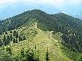 Pe Varful Cozia (1668m) - panoramio.jpg