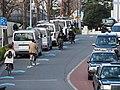 People cycling on chevron markings in Harajuku.jpg