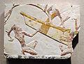 Periodo tardo, XXVI dinastia, scena di costruzione di una nave, 664-634 ac ca..JPG