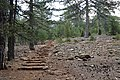 Persephone Nature Trail, Troodos, Cyprus - panoramio (44).jpg