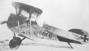 Phönix D.I - Phönix D.I in Austro-Hungarian service