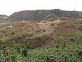 Pico da Antonia-Cultures en terrasses.jpg