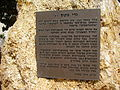 PikiWiki Israel 14291 Gadi Notes Garden in Raanana.JPG