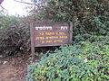 PikiWiki Israel 34455 Diamond garden in Ramat Gan.JPG