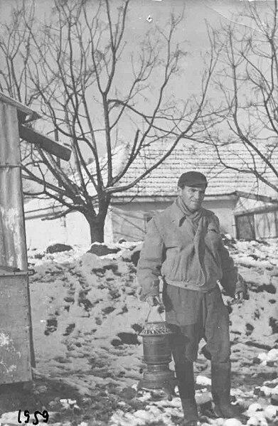 שלג בשמיר 1959
