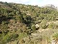 Pinos-Marnes Sella de Cau hike (26641003380).jpg