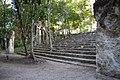 Poetén Campechan, Calakmul, Campeche (22209739431).jpg