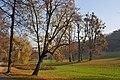 Poetzleinsdorf Park 04.jpg