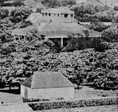 Pohukaina and old Iolani Palace.jpg