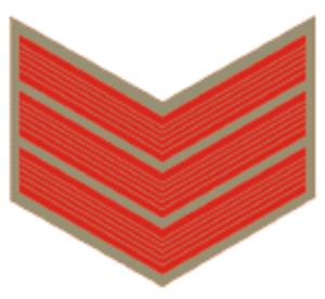 Head constable - Insignia of an Indian Police officer with rank of head constable