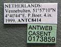 Polyergus rufescens casent0173859 label 1.jpg