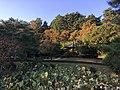 Pond at Ojukheon.jpg