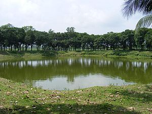 Panchagarh District - Pond of beside the 12 Auliar mazar in Panchagarh