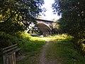 Ponte ferroviaria do Carregal (3).jpg