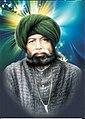 Portrait of Bahadur Ali Shah.jpg