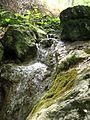 Povlen - Srednji Povlen - reka Cetina - Vodopad u gornjem toku 2.jpg