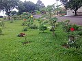 Pracinha florida - panoramio.jpg