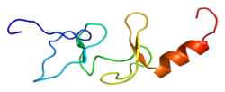 Protein TRIP6 PDB 1x61.png