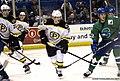 Providence Bruins vs Connecticut Whale - Maxime Sauve.jpg