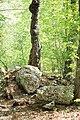 Pszczyna, Park Zamkowy - fotopolska.eu (318809).jpg