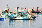 Puerto de Paracas, Perú, 2015-07-29, DD 10.JPG