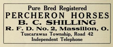 File:Pure bred registered Percheron horses - Tuscarawas Township - Massilon Ohio - 1915 advertisement.tiff