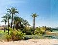 Qena, Qism Qena, Qena, Qena Governorate, Egypt - panoramio (1).jpg