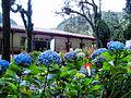 Quinta de Bolívar 1.jpg