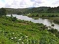 Río Umia dende Paradivas.Caldas de Reis.Galiza.jpg