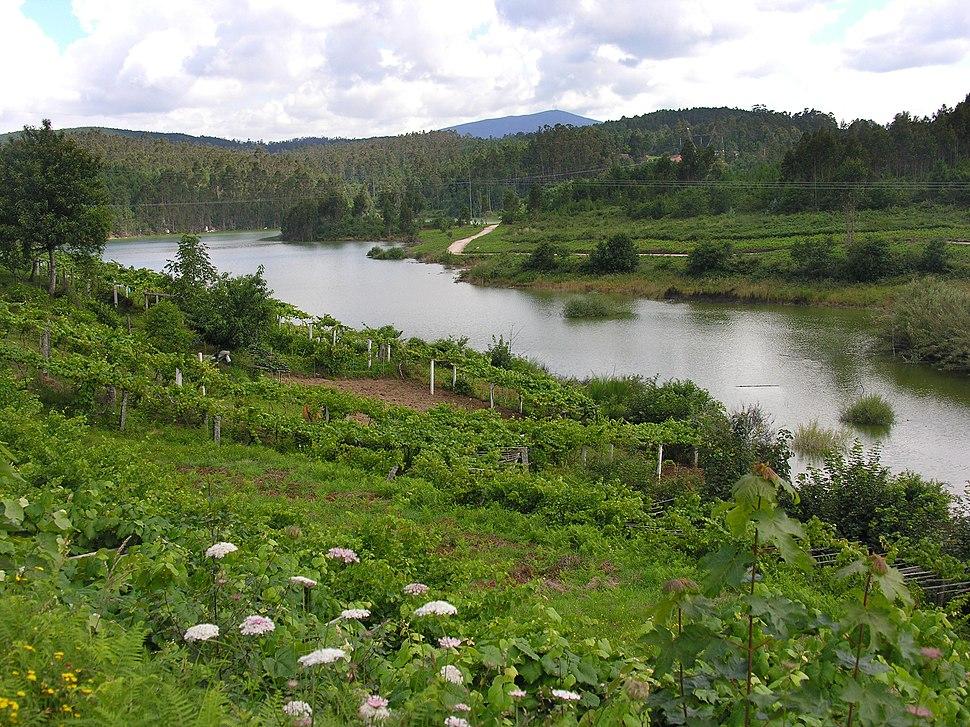 Río Umia dende Paradivas.Caldas de Reis.Galiza
