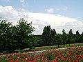 R30, Moldova - panoramio (15).jpg
