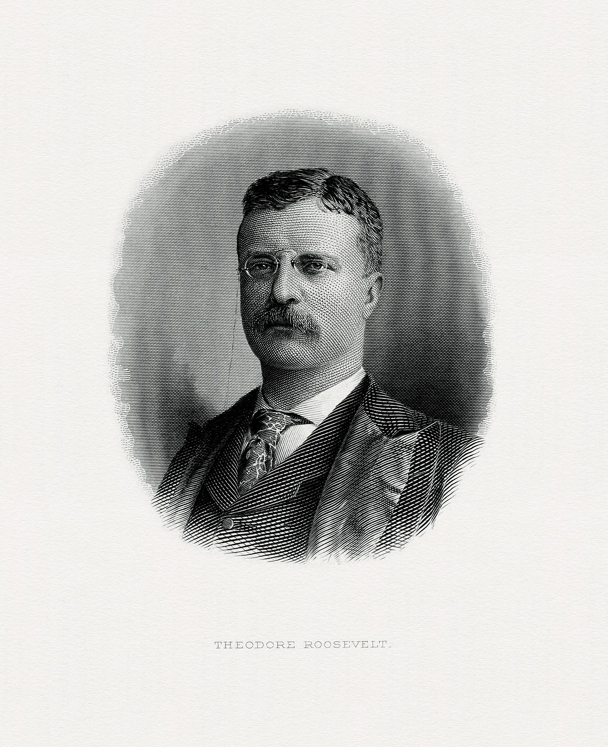 theodore roosevelt digital library
